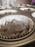 γκρίζο cupcake στοκ φωτογραφία με δικαίωμα ελεύθερης χρήσης