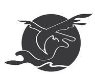 γκρι αετών Στοκ εικόνες με δικαίωμα ελεύθερης χρήσης