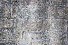 γκρι τούβλων Στοκ Εικόνες