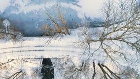 _ Γλιστρώντας υπερυψωμένος πυροβολισμός κηφήνων του μικρού ποταμού που περνά λίγη γέφυρα που περιβάλλεται από τα δέντρα στο κρύο  απόθεμα βίντεο