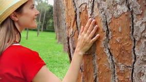 Γλιστρώντας χέρι γυναικών κατά μήκος του παλαιού δέντρου σε σε αργή κίνηση Θηλυκό χέρι σχετικά με την επιφάνεια κρουστών του κορμ φιλμ μικρού μήκους