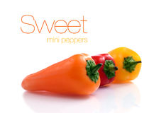 Γλυκά μίνι πιπέρια Στοκ Εικόνες