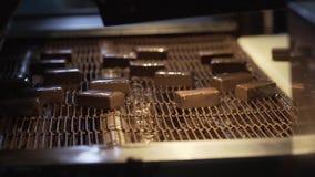 Γλυκά σοκολάτας στο μεταφορέα Παραγωγή των σοκολατών Παραγωγή εργοστασίων των σοκολατών φιλμ μικρού μήκους