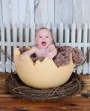 Γλυκιά συνεδρίαση μωρών στο γιγαντιαίο αυγό Στοκ Εικόνα