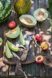Γλυκός διάφορος των νωπών καρπών στον κήπο Στοκ εικόνες με δικαίωμα ελεύθερης χρήσης