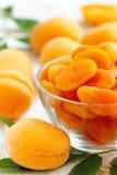 Γλυκός ξηρός - φρούτα βερίκοκα ξηρά Στοκ εικόνες με δικαίωμα ελεύθερης χρήσης