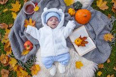Γλυκός Οκτώβριος στοκ φωτογραφίες με δικαίωμα ελεύθερης χρήσης