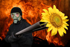 γλυκός τρυφερός τρομοκ&r Στοκ εικόνες με δικαίωμα ελεύθερης χρήσης