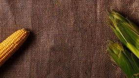 Γλυκό καλαμπόκι burlap Φρέσκος, οργανικός αραβόσιτος Τοπ όψη στοκ εικόνες με δικαίωμα ελεύθερης χρήσης