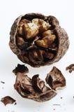 γλυκό καρυδιών επιδορπί&ome Στοκ Φωτογραφία