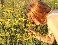 γλυκό μυρωδιάς Στοκ εικόνα με δικαίωμα ελεύθερης χρήσης