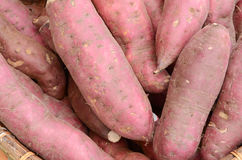 γλυκό πατατών Στοκ Εικόνες