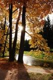γλυκό Σεπτεμβρίου Στοκ εικόνες με δικαίωμα ελεύθερης χρήσης