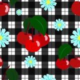 Γλυκό juicy camomile κερασιών άνευ ραφής σχέδιο διανυσματική απεικόνιση