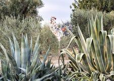 Γλυπτό κοκκόρων στην είσοδο στο Masseria Torre Coccaro Στοκ εικόνες με δικαίωμα ελεύθερης χρήσης