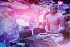 Γλυπτό του Βούδα σε ένα floral ρόδινο υπόβαθρο λωτός λουλουδιών ιερός Καλλιτεχνική εικόνα Στοκ Φωτογραφία