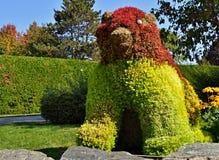 Γλυπτό του ζώου από τους πράσινους και κόκκινους θάμνους θάμνων Στοκ φωτογραφία με δικαίωμα ελεύθερης χρήσης