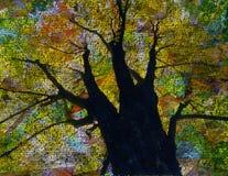 γλωσσικό δέντρο Στοκ Φωτογραφία