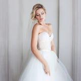 Γοητεία της νέας νύφης στο πολυτελές γαμήλιο φόρεμα Όμορφο κορίτσι, το στούντιο φωτογραφιών στοκ εικόνες