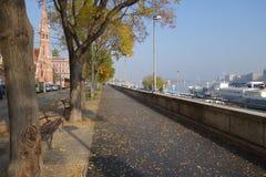 Γοητευτική αλέα στη Βουδαπέστη στοκ εικόνες