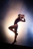 Γοητευτική γυναίκα προκλητικό lingerie Στοκ Φωτογραφία