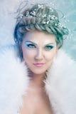 Γοητευτική χειμερινή βασίλισσα Στοκ εικόνα με δικαίωμα ελεύθερης χρήσης
