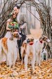 Γοητευτικό γαμήλιο ζεύγος που περπατά με τα σκυλιά στο δάσος φθινοπώρου Στοκ εικόνα με δικαίωμα ελεύθερης χρήσης