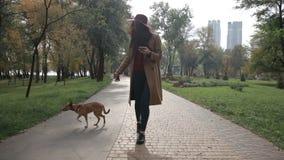 Γοητευτικό γυναικών στο τηλέφωνο περπατώντας το σκυλί απόθεμα βίντεο