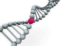 γονίδιο DNA Στοκ εικόνες με δικαίωμα ελεύθερης χρήσης