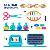 Γονιδίωμα που τοποθετεί διαδοχικά sheme Ανθρώπινο πρόγραμμα γονιδιώματος Επίπεδη διανυσματική απεικόνιση ύφους ελεύθερη απεικόνιση δικαιώματος