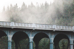 Γοτθική γέφυρα στο Pacific Coast Στοκ φωτογραφία με δικαίωμα ελεύθερης χρήσης