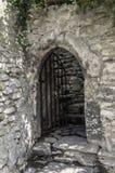 Γοτθική πόρτα. Στοκ φωτογραφία με δικαίωμα ελεύθερης χρήσης