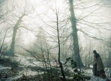 Γοτθικό δάσος Στοκ εικόνα με δικαίωμα ελεύθερης χρήσης