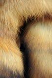 γούνα Στοκ Φωτογραφίες