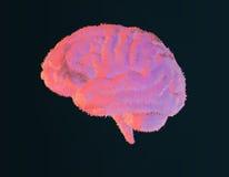 Γούνινη απεικόνιση εγκεφάλου στο σκοτεινό υπόβαθρο Στοκ Φωτογραφία