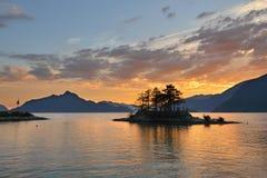 Γούνινος κολπίσκος στο ηλιοβασίλεμα στοκ φωτογραφίες