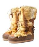 γούνινος χειμώνας μποτών στοκ εικόνα με δικαίωμα ελεύθερης χρήσης