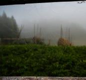 Γούρνα άποψης ο ιστός αράχνης Στοκ Φωτογραφίες
