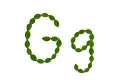 Γράμμα Γ, αλφάβητο που γίνεται από τα πράσινα φύλλα Στοκ φωτογραφίες με δικαίωμα ελεύθερης χρήσης