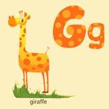 Γράμμα Γ με χαριτωμένο Giraffe Στοκ Εικόνες