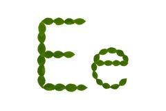 Γράμμα Ε, αλφάβητο που γίνεται από τα πράσινα φύλλα Στοκ φωτογραφία με δικαίωμα ελεύθερης χρήσης