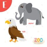 Γράμμα Ε Χαριτωμένα ζώα Αστεία ζώα κινούμενων σχεδίων στο διάνυσμα Boo ABC Στοκ φωτογραφίες με δικαίωμα ελεύθερης χρήσης