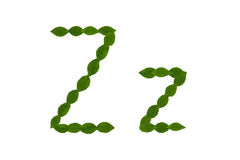 Γράμμα Ζ, αλφάβητο που γίνεται από τα πράσινα φύλλα Στοκ φωτογραφίες με δικαίωμα ελεύθερης χρήσης