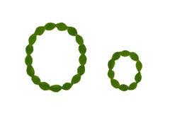 Γράμμα Ο, αλφάβητο που γίνεται από τα πράσινα φύλλα Στοκ φωτογραφία με δικαίωμα ελεύθερης χρήσης