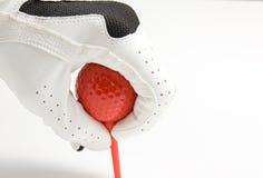 γράμμα Τ καλάμων γκολφ σφα Στοκ Φωτογραφία
