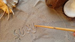 Writes the word summer, on the sand of the beach with a seashell and a coconut Stock Footage