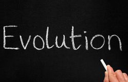 γράψιμο δασκάλων εξέλιξη&sigm στοκ εικόνα με δικαίωμα ελεύθερης χρήσης