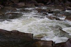 Γρήγορα, θορυβώδης ποταμός βουνών, φυσικό υπόβαθρο στοκ εικόνες