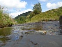 Γρήγορα ρέοντας ρεύμα σε Abergwesyn, μέση Ουαλία στοκ φωτογραφία με δικαίωμα ελεύθερης χρήσης