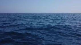 Γρήγορη πτήση στη θάλασσα απόθεμα βίντεο